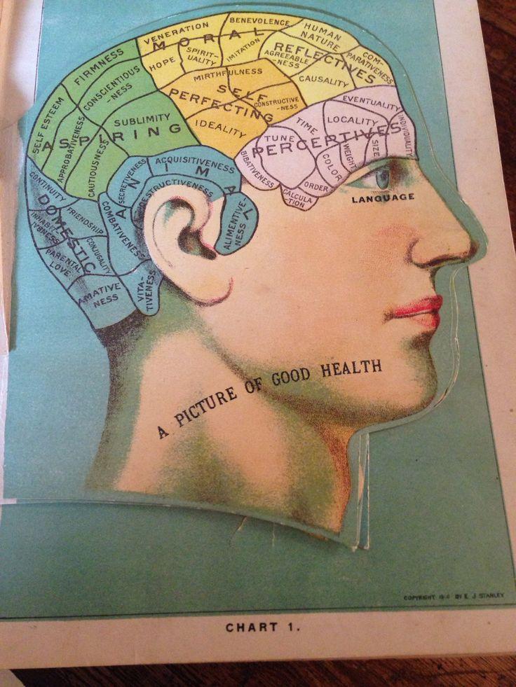 1000+ ιδέες για Ιατρικές Παραδοξότητες στο Pinterest Τρομακτικό - medical charts