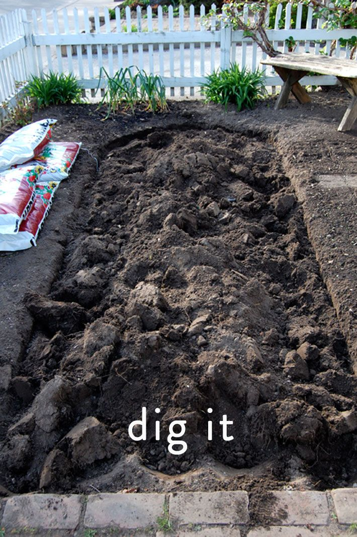 How To Lay Sod A Step By Step Guide To The Perfect Lawn How To Lay Sod Outdoor Gardens Sod Grass