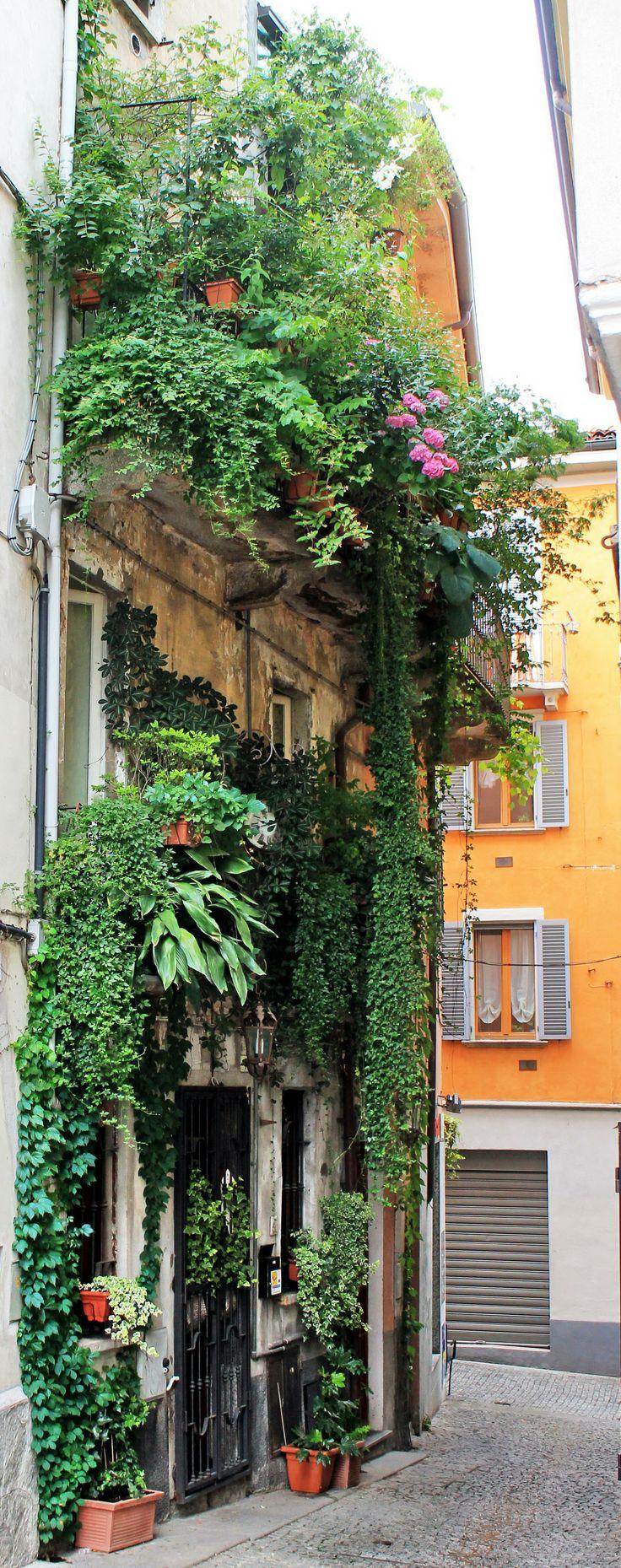 Verbiana (Piemonte) - Italy - by Guido Tosatto