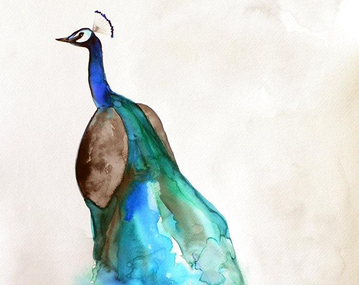 Peacock Watercolor Print - by Mai Autumn: Peacock Art, Birds Art, Peacock Watercolor, Watercolor Paintings, Birds Paintings, Watercolor Peacock, Peacock Colors, Drawings Ideas, Watercolor Prints