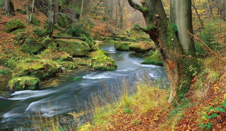 Ochrana přírody a krajiny ČR