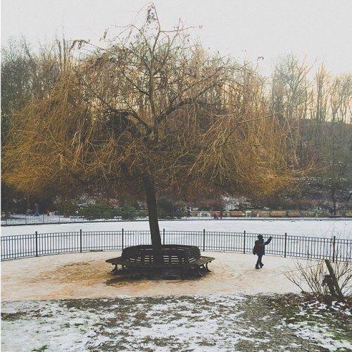 Snowy Volkspark in Berlin, Friedrichshain.  #berlin #germany #friedrichshain #winter #snow #tree #nature #ice #lake #urban #cities #boy #travelgram #travel #travelphotography #street #vsco #photooftheday #pictureoftheday #follow #colorsofwinter...