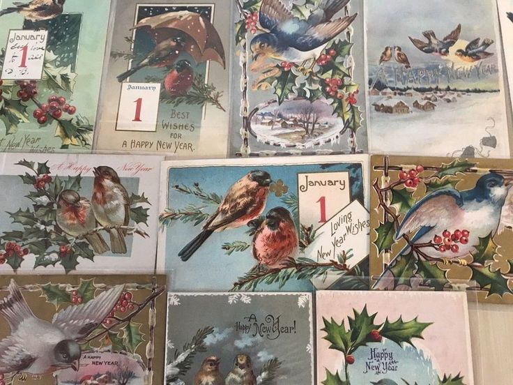 Lot of 11 Antique New Year Holiday Postcards ALL WITH Pretty  BIRDS bird-p510 #NewYear