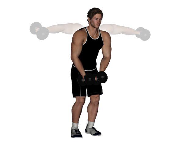 Evde vücut geliştirmek, kaslarınızı harekete geçirmek ve kas egzersizleri