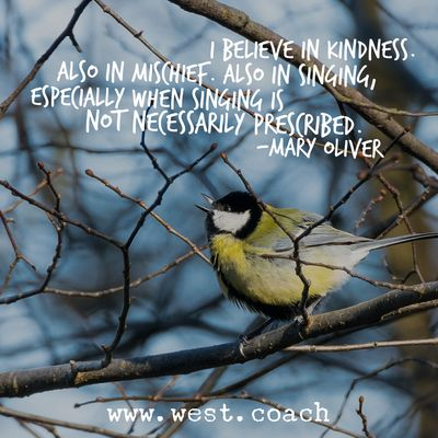 INSPIRATION - EILEEN WEST LIFE COACH | I believe in Kindness.  Also in Mischief.  Also in Singing, especially when singing is not necessarily prescribed. - Mary Oliver |  Life Coach, Eileen West Life Coach, inspiration, inspirational quotes, motivation, motivational quotes, quotes, daily quotes, self improvement, personal growth, live your best life, freedom, kindness, mischief, singing, Mary Oliver, Mary Oliver quotes