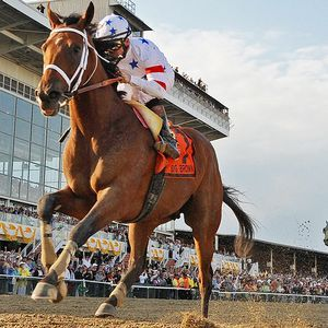 Big Brown, 2008 Kentucky Derby and Preakness Stakes winner, first horse since Clyde Van Dusen to win the Kentucky Derby from the 20th post position