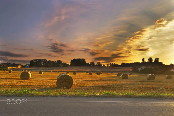 The hay field at sunset - The light of the rising sun illuminates the field with hay bales