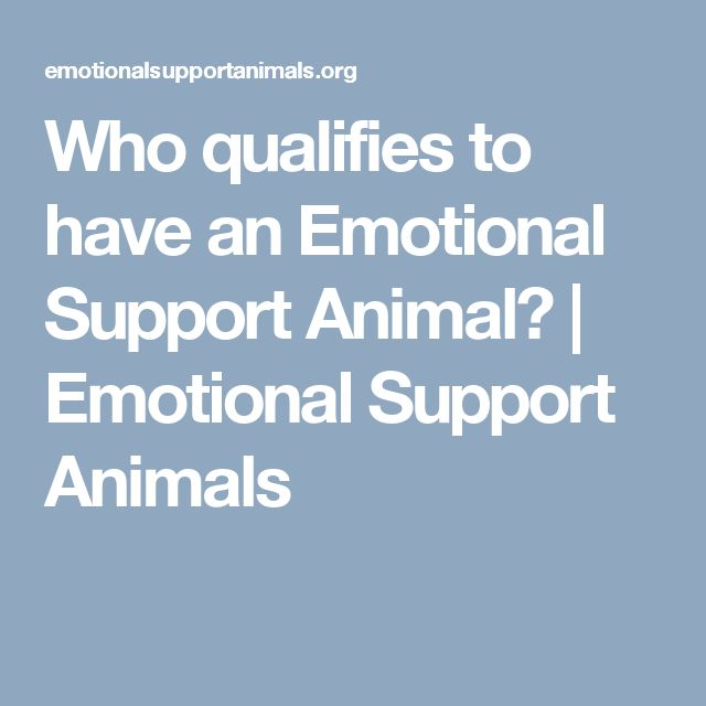 Who qualifies to have an Emotional Support Animal? | Emotional Support Animals