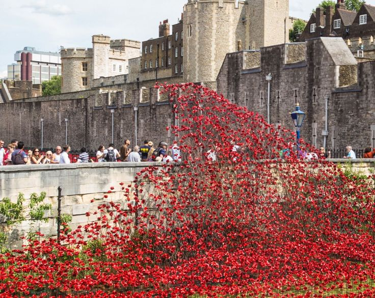 DAF Trucks to support UK exhibition tour of Tower of London Poppies | DAF Dealer Network