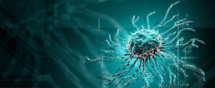 Promising Genetically-Enhanced Stem Cell Therapy for Pulmonary Arterial Hypertension Pulmonary Hypertension News