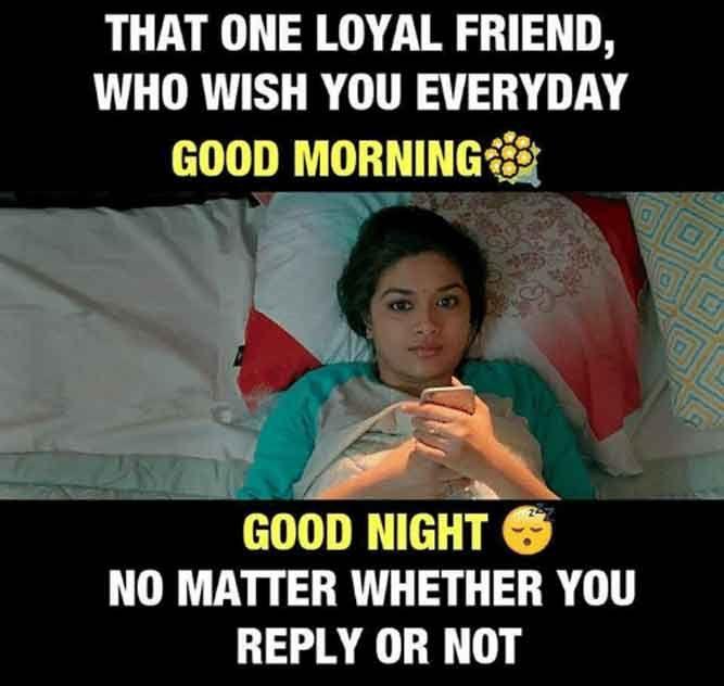 Top 76 Good Night Memes Funny Good Night Sleep Well Good Night Sleep Well Good Night Quotes Good Night Hug