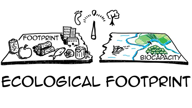 Ecological footprint: do we fit on our planet? Watch http://sustainabilityillustrated.com/en/portfolio/ecological-footprint-do-we-fit-our-planet/