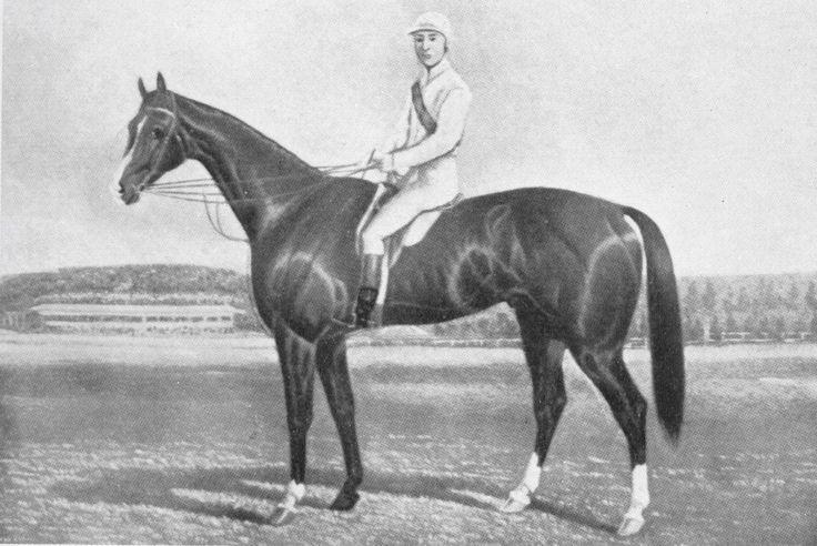 1884 Malua - List of Melbourne Cup winners - Wikipedia, the free encyclopedia