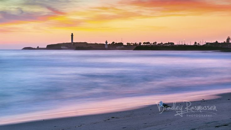 Wollongong's Early Bird | Wollongong turned on a spectacular sunrise. #NSW # Australia #Illawarra #photography #sunrise