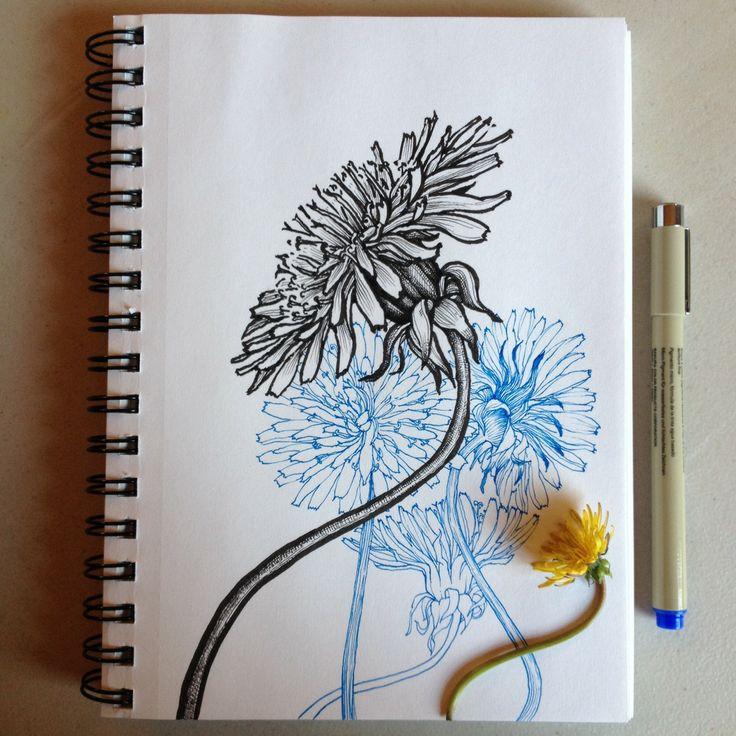 Dandelions, Noel Badges Pugh