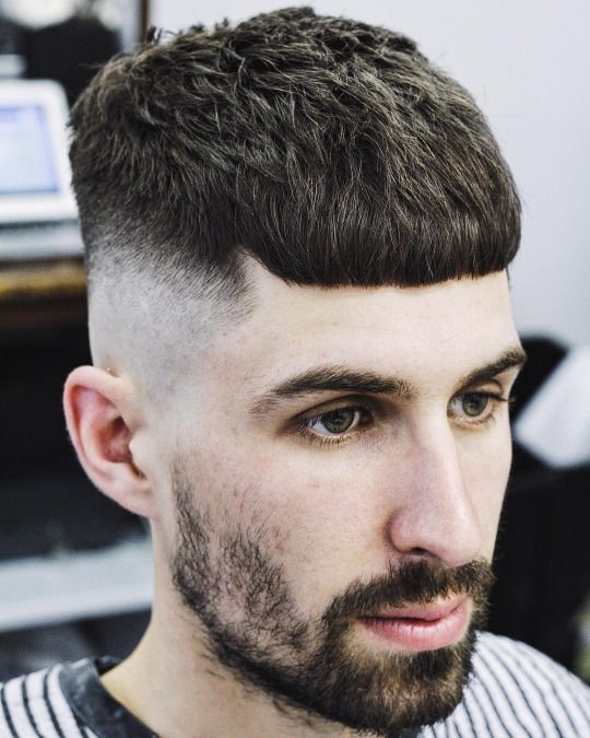 31 Best French Crop Haircut Images On Pinterest