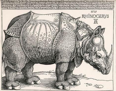 Albrecht Dürer, Rhinocerus, 1515 on ArtStack #albrecht-durer #art