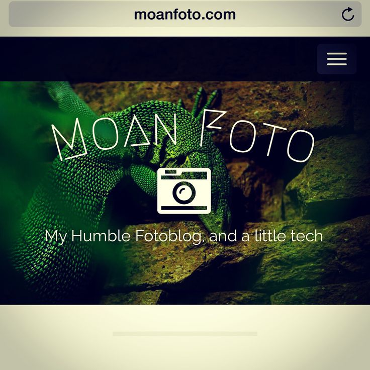Follow my blog www.moanfoto.com
