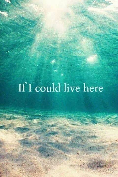 Image result for i'm a mermaid quotes #ScubaDivingInfographicsandQuotes