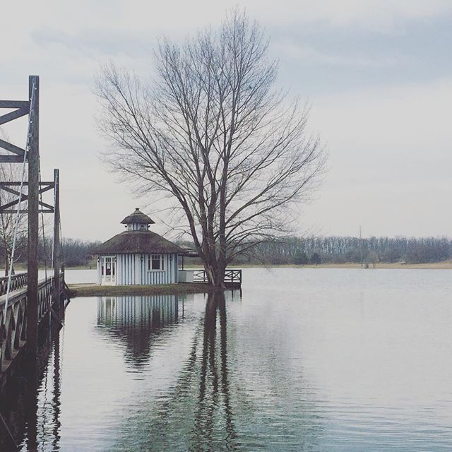 Beautiful view #potd #lake #fall #cold #austria #latergram #instagood #inspiration