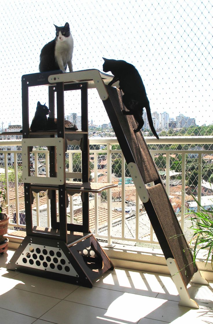 1000 images about cat trees for vertical spacing on for Diy cat playground