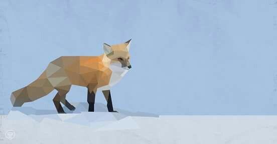 Fox illustrated