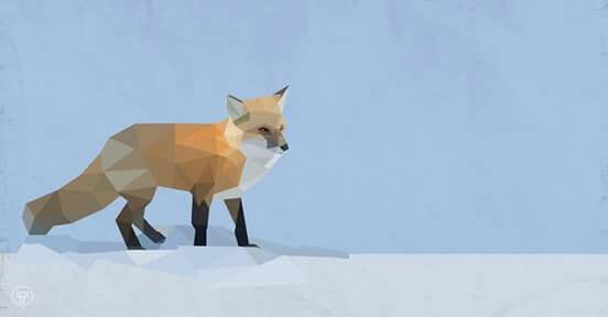 Fox illustrated