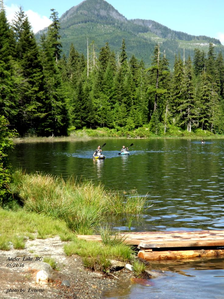 Antler Lake , Gold River BC