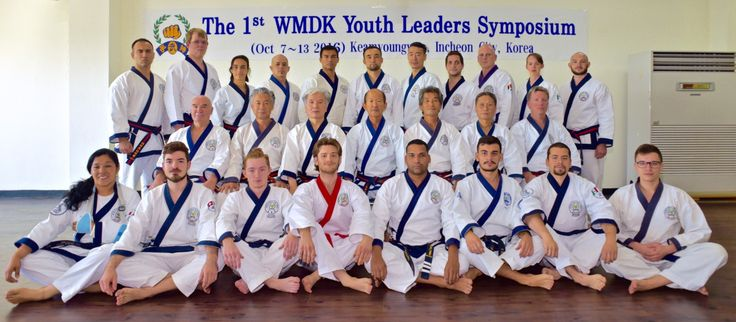 tang soo do forms diagrams ac unit thermostat wiring diagram 18 best bahk moo duk kwan images on pinterest | combat sport, marshal arts and martial art