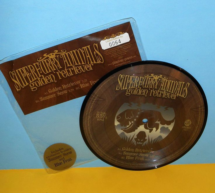 """SUPER FURRY ANIMALS golden 7"""" PIC DISC Record LOW NUMBER!! .. #64 of ? pressed #AlternativeIndie"""