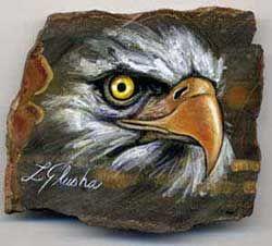 Bald Eagle A009