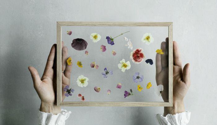 好きな花々を散らして額に入れて飾るがけの簡単DIY。 欲張らず、散らすように並べると、シンプルでお洒落な押し花アートを作ることができます。