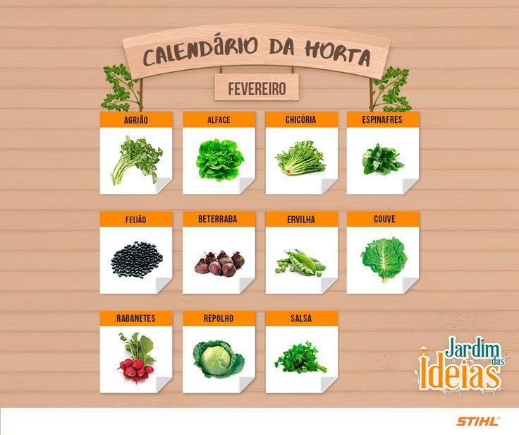 Selecionamos algumas verduras e legumes para cultivo em fevereiro. Lembrando que em algumas regiões podem variar, pois os períodos de plantio podem ser diferentes por causa do clima.