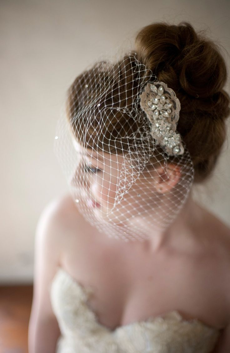 Beautiful birdcage Veil