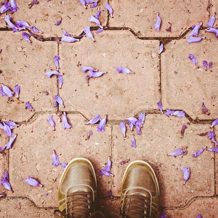 selfeet with jacaranda flowers - Mexico City by Mónica Durán on 500px