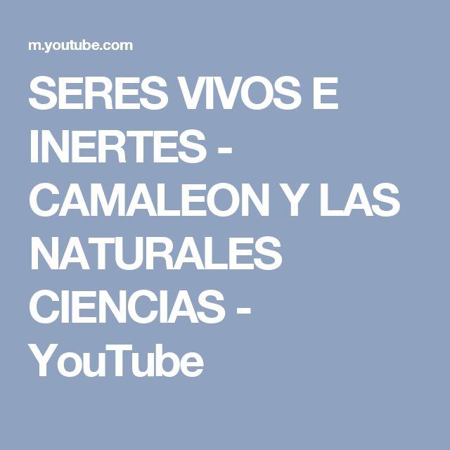 SERES VIVOS E INERTES - CAMALEON Y LAS NATURALES CIENCIAS - YouTube