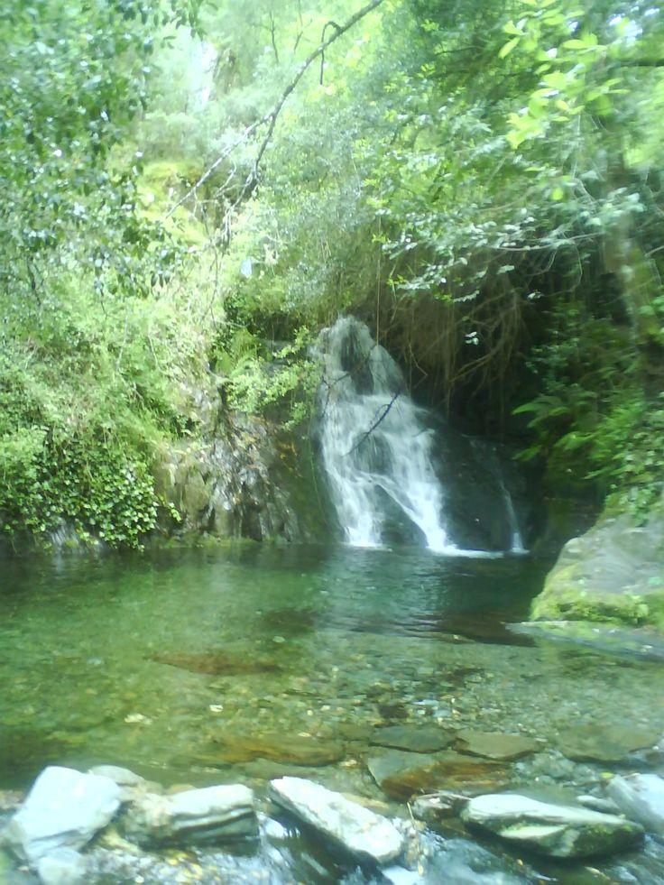 Serra do Açor - Maio 2009