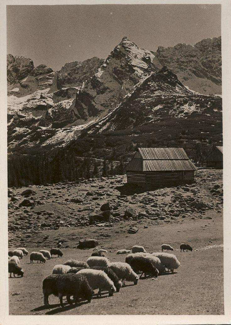 the Tatra Mountains, 1938
