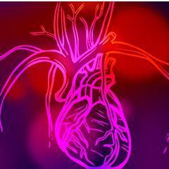 Que sont la crise, l'arrêt et l'insuffisance cardiaques et leurs causes ?