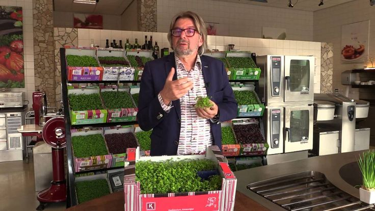 Rob Baan introduces Baby Clover Cress. A decorative small-leaved cress with clover-shaped (heart-shaped, lancet-shaped) leaves and a slightly acidic taste. #...
