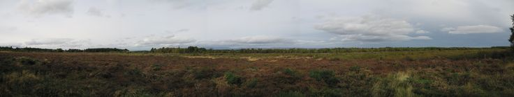 This is the Culloden battlefield in Scotland, site of the last fighting there - a blood bath. Remains were piled together in mounds identified only by family names, the McIntoshes, for example. The land seems sacred.