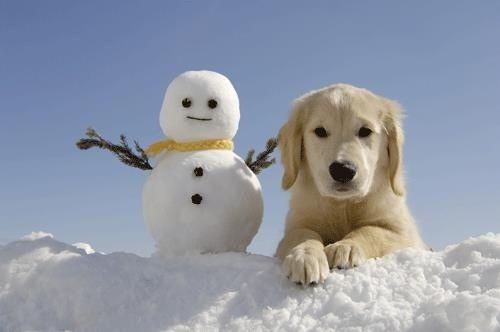 I made you a snowman: