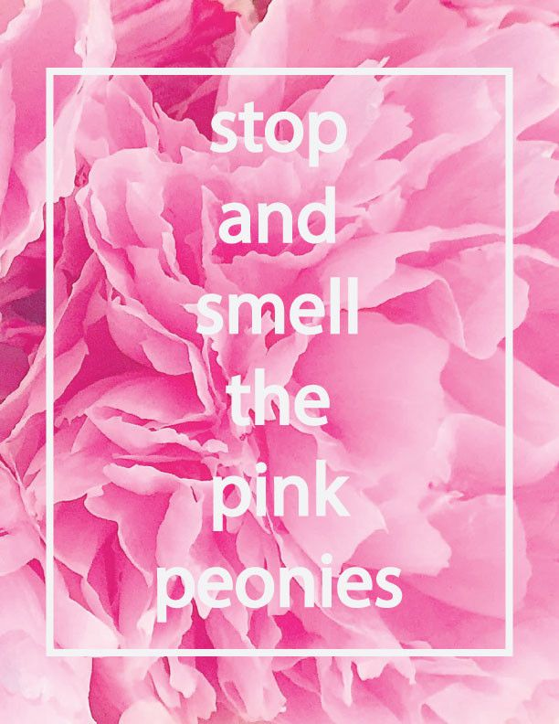 """Stop and Smell the Pink Peonies - 8.5"""" x 11"""" Print"""