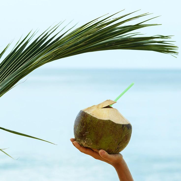Not only is coconut a delicious drink but did you know