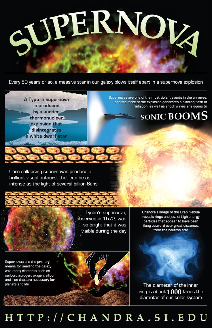 Supernova Infographic  Every 50 years or so, a massive star in our galaxy blows itself apart in a supernova explosion.(Illustration: NASA/CXC/M.Weiss)    Larger version: http://chandra.si.edu/resources/illustrations/infographics.html    Related Link: http://chandra.si.edu/xray_sources/supernovas.html