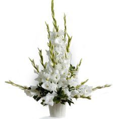 pictures of floral arrangements with gladiolas | Description Substitution Policy Delivery Policy