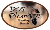 Where we treat you like family … not a number  Hog hunting in Texas as well as ram hunts can be hunted year-round, therefore, offering hunters opportunities to get out and test their skills any time of the year!  Every hunter can tailor their hog hunt according to their specific needs but when you hunt at