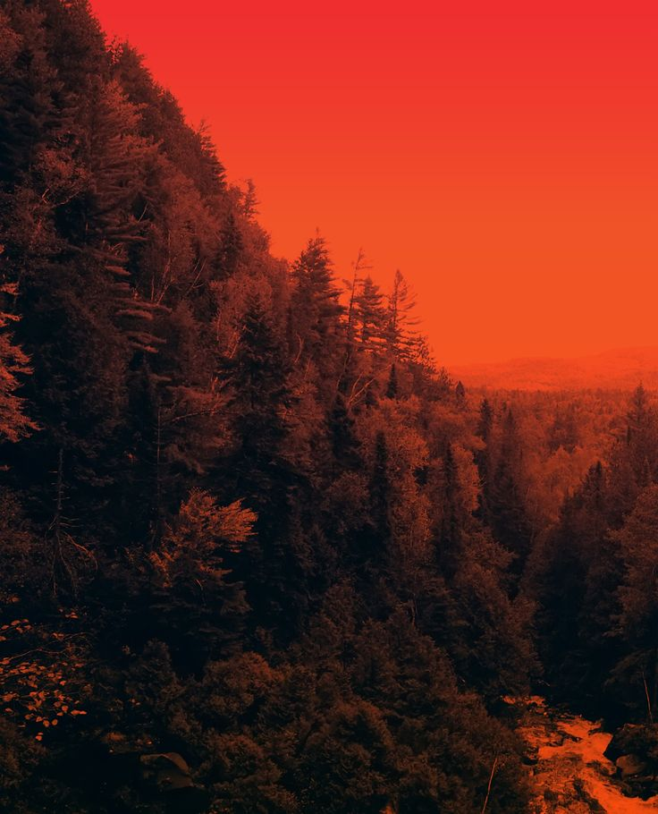The Redness by Adida Fallen Angel on 500px