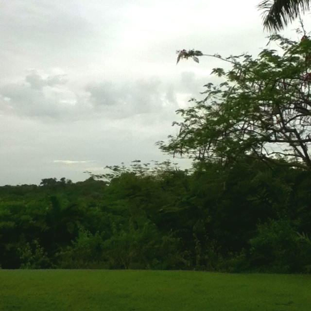 A cloudy day in Jamaica! The weather forecast says its supposed to rain all week! NOOOOOOO!!!!