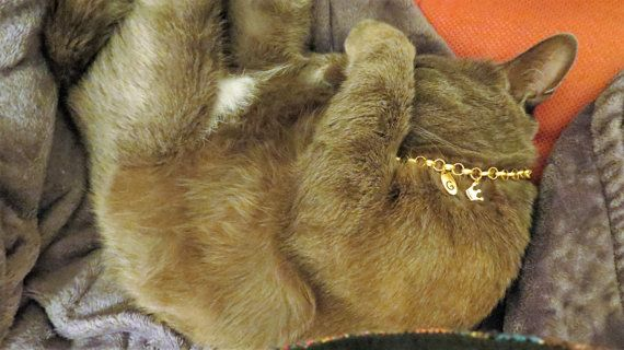 Personalized cat collar personalized cat by OlaJewelryDesign